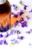 Violet syrup. Sweet violets syrup for baking and treatment stock images