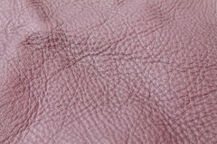 Violet taupe vegetable tanned leather background texture. Violet taupe vegetable tanned animal skin cowhide leather background texture Stock Image