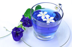 Violet tea with blue flowers. Isolated of violet tea with blue flowers Stock Photos