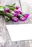 Violet tulips on the oak brown table with white sheet of paper Stock Photo