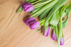 Violet tulips on the wood Royalty Free Stock Photography