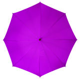 Violet umbrella isolated Royalty Free Stock Photography