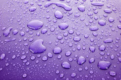 Violet water drops Royalty Free Stock Images