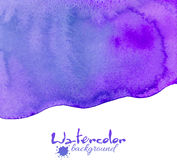 Violet watercolor vector background Stock Photo