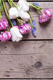 Violet and white tulips and muscaries flowers on aged wooden  ba Stock Images