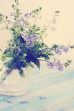 Violet wild, tinted. Bouquet of spring flowers violet wild, tinted Royalty Free Stock Photography
