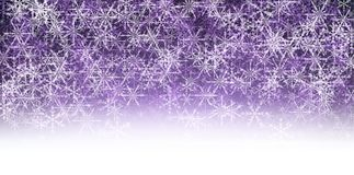 Violet winter background with snowflakes. Royalty Free Stock Image