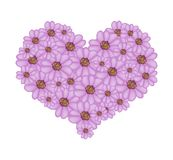 Violet Yarrow Flowers in A Heart Shape Royalty Free Stock Photo