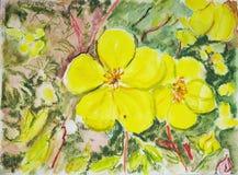 Violeta amarilla Pintura de la acuarela Foto de archivo libre de regalías