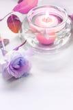 A violeta aumentou com uma vela no fundo cinzento Foto de Stock