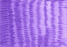 Violeta pintada desigual, fundo roxo ilustração do vetor