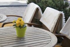 Violetas amarillas en un pote plástico en una tabla en un café y sillas de mimbre con las telas escocesas blancas Imagen de archivo libre de regalías