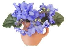 Violetas azules apacibles en un pequeño jarro Fotografía de archivo libre de regalías