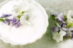 Violetas cristalizadas Fotos de Stock Royalty Free