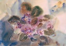 Violetas da pintura na aquarela Imagens de Stock Royalty Free