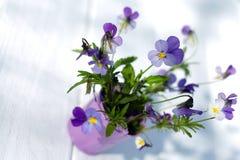 Violetas em um vaso em uma tabela branca Fotos de Stock Royalty Free