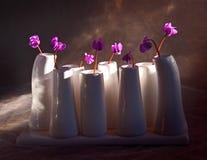 Violetas en un florero. Fotografía de archivo