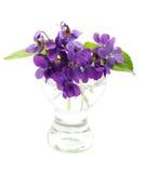 Violetas en un florero Fotos de archivo libres de regalías