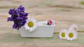 Violetas y margaritas en un pequeño florero Imagen de archivo