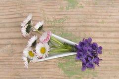 Violetas y margaritas en un pequeño florero Foto de archivo libre de regalías