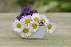 Violetas y margaritas en un pequeño florero Imágenes de archivo libres de regalías