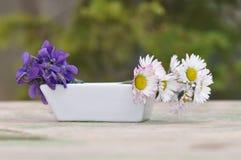 Violetas y margaritas en un pequeño florero Imagenes de archivo