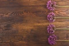 Violeten blommar på träbrädet Arkivbilder