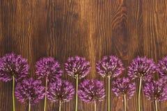 Violeten blommar på träbrädet Royaltyfri Foto