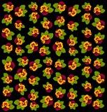Violets on black background. Stock Image