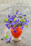 Violets flowers (Viola odorata) Royalty Free Stock Image