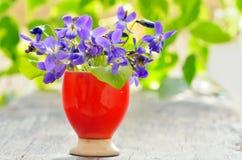 Violets flowers Viola odorata Stock Photography
