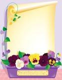 Violets och papper Royaltyfri Foto