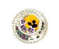 Violets and Pansies Stock Photos