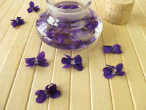 Violets perfume Stock Photography