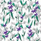 Violets and vines Royalty Free Stock Images