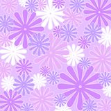 Violets and whites. Violet and white floral pattern Royalty Free Stock Images