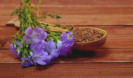 Violett blomma av lin och frö i en träsked på en gammal vint Royaltyfria Bilder