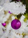 Violett boll på julträd Arkivfoto