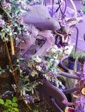 Violett cykel Arkivbild