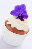 Violett muffin Arkivfoton