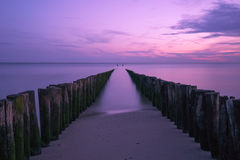 Violett seascape royaltyfri fotografi