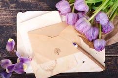 Violett tulpan och tappning skyler över brister, ritar på en träbakgrund Fritt avstånd för din text Royaltyfria Foton
