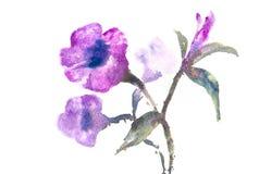 Violetta blommor, vattenfärgmålning Arkivbilder