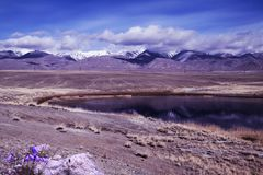 Violetta handbells och lila sjö med reflexion av berget fotografering för bildbyråer