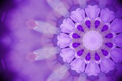 Violetta lösa blommor med kalejdoskopet verkställer, gör sammandrag Ult färg Royaltyfria Foton