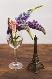Violetta lupines i vinglaset Royaltyfria Bilder