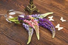 Violetta lupines i vinglaset Arkivfoton