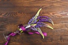 Violetta lupines i vinglaset Royaltyfri Bild