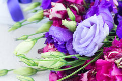 Violetta och malvafärgade eustomablommor Royaltyfria Foton