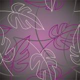 Violette Blätter Stockfotos